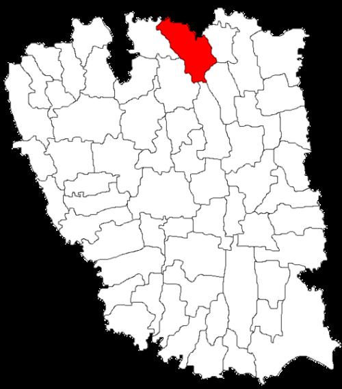 balabanesti1