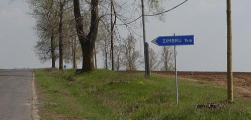 zimbru 1